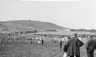Enemy Aliens and Internment | International Encyclopedia of the ...